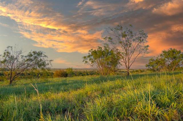 3601 Bear Creek Rd, Aledo, TX 76008 (MLS #14648155) :: Robbins Real Estate Group