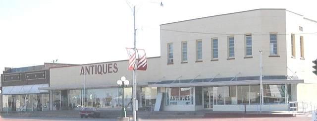 204 S Commercial Avenue, Coleman, TX 76834 (MLS #14648263) :: KW Commercial Dallas