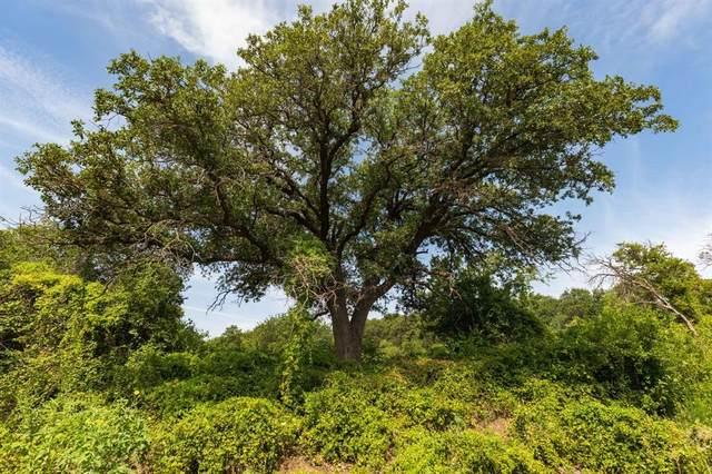 TBD Cr 335, Hawley, TX 79525 (#14648681) :: Homes By Lainie Real Estate Group