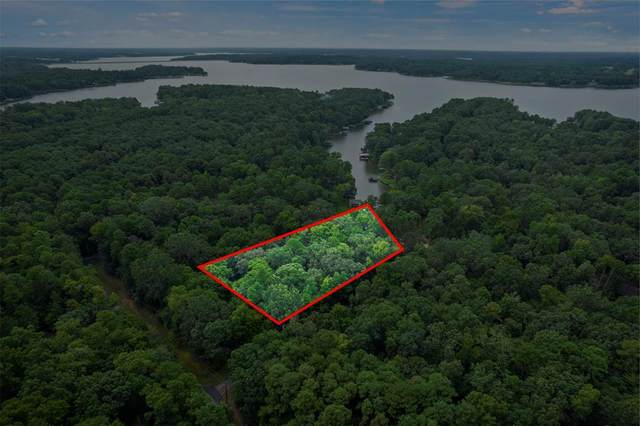 TBD Trappers Trail, Mount Vernon, TX 75457 (MLS #14649468) :: Russell Realty Group