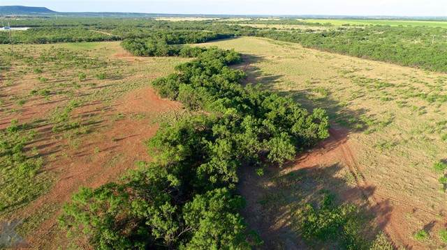 TBD 1 County Road 174, Ovalo, TX 79541 (MLS #14650805) :: The Russell-Rose Team