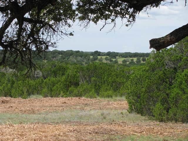 TBD-22 County Rd 102, Jonesboro, TX 76538 (MLS #14651682) :: Real Estate By Design