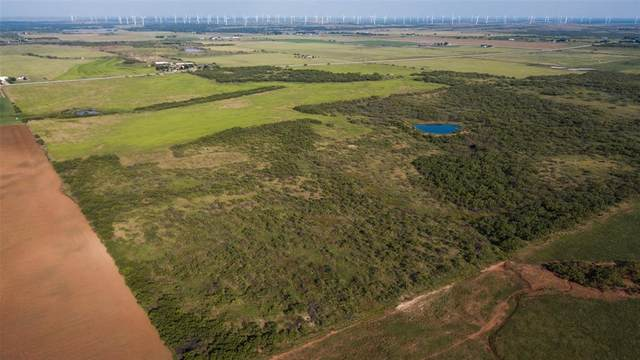 TBD Hwy 281, Windthorst, TX 76389 (MLS #14652465) :: Real Estate By Design