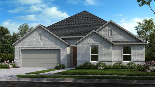1809 Wade Court, Little Elm, TX 75068 (MLS #14652766) :: The Star Team | Rogers Healy and Associates