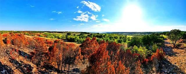 1067 Enchanted Rock Court, Possum Kingdom Lake, TX 76449 (MLS #14654890) :: Robbins Real Estate Group