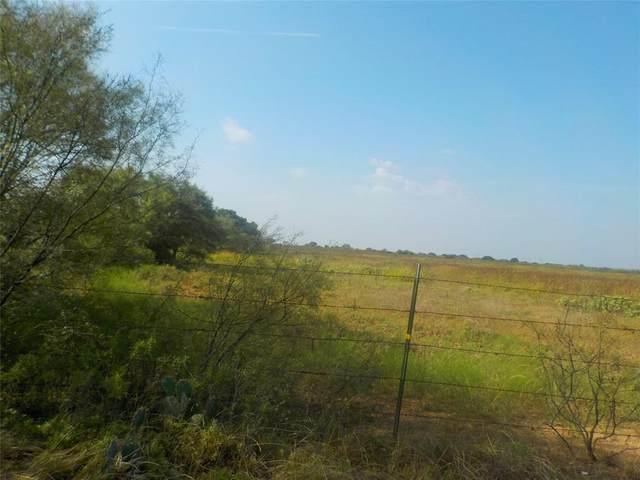 TBD County Road 339, Early, TX 76802 (MLS #14655726) :: VIVO Realty
