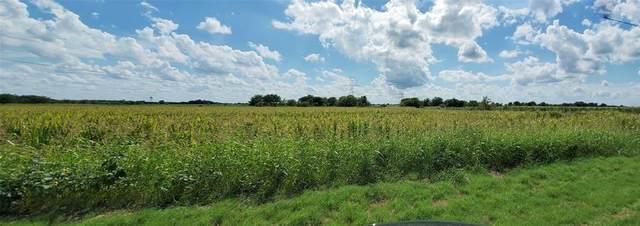 1136 N Fm 157, Venus, TX 76084 (MLS #14656074) :: The Hornburg Real Estate Group