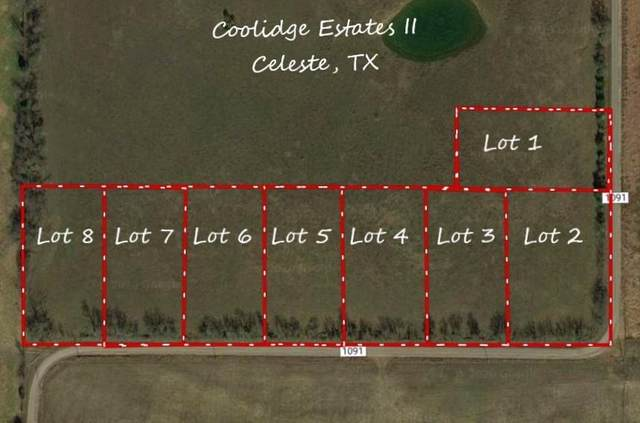 Lot 7 County Road 1091, Celeste, TX 75423 (MLS #14656498) :: Robbins Real Estate Group