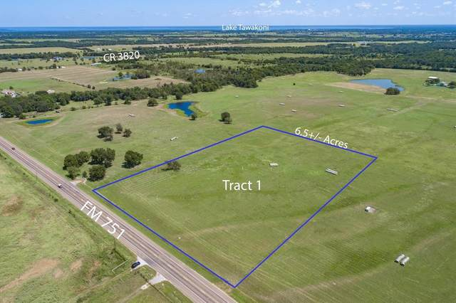 TBD 000 Fm 751, Wills Point, TX 75169 (MLS #14656663) :: Robbins Real Estate Group