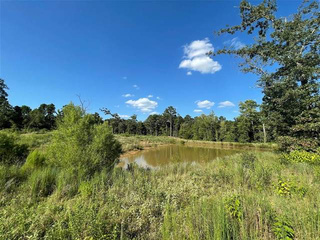 TBD County Road 2930, Alba, TX 75410 (MLS #14657961) :: Real Estate By Design