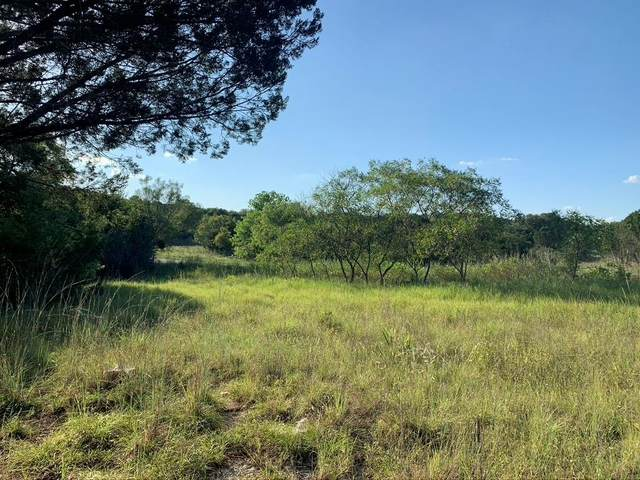 1760 Mariner Valley, Bluff Dale, TX 76433 (MLS #14658107) :: The Star Team | Rogers Healy and Associates
