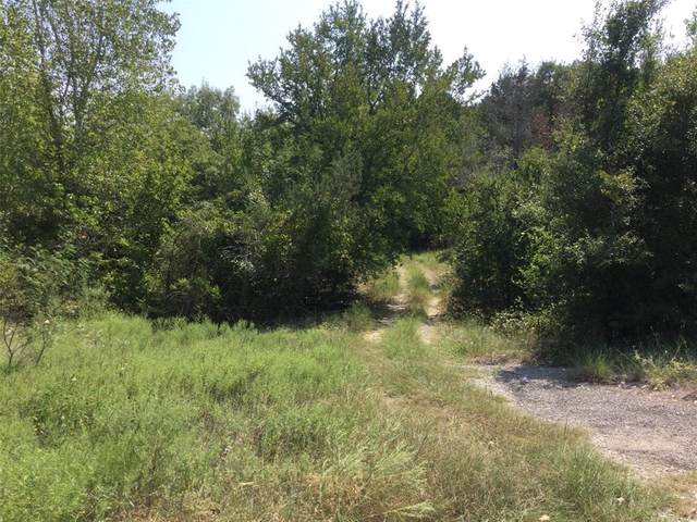 135 Autumn Valley, Bluff Dale, TX 76433 (MLS #14658264) :: The Star Team | Rogers Healy and Associates