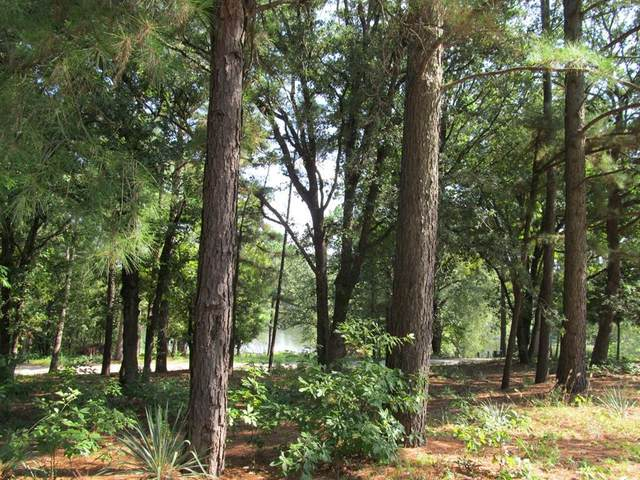 TBD Cr 2307, Mineola, TX 75773 (MLS #14658447) :: Frankie Arthur Real Estate