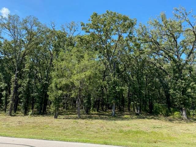8391 Southern Shore Court, Kemp, TX 75143 (MLS #14658527) :: Robbins Real Estate Group
