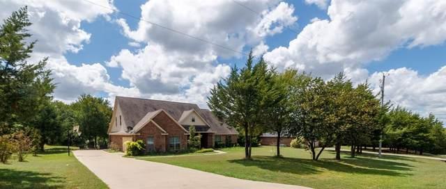 330 Pecan Hollow Circle, Anna, TX 75409 (MLS #14658583) :: Real Estate By Design