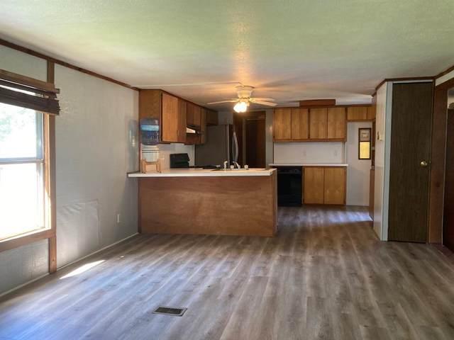 66 Lanes Lane, Pottsboro, TX 75076 (MLS #14659635) :: Real Estate By Design