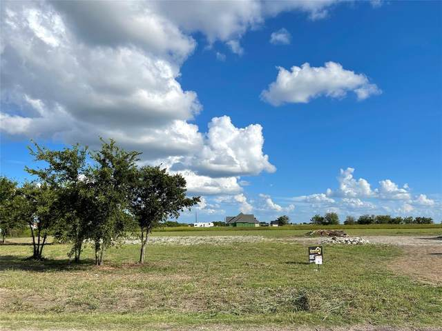 000 E Pecan Tree Road, Waxahachie, TX 75165 (MLS #14659650) :: Real Estate By Design