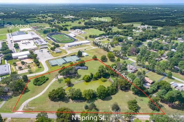 1203 N Spring Street, Grand Saline, TX 75140 (MLS #14659971) :: Frankie Arthur Real Estate