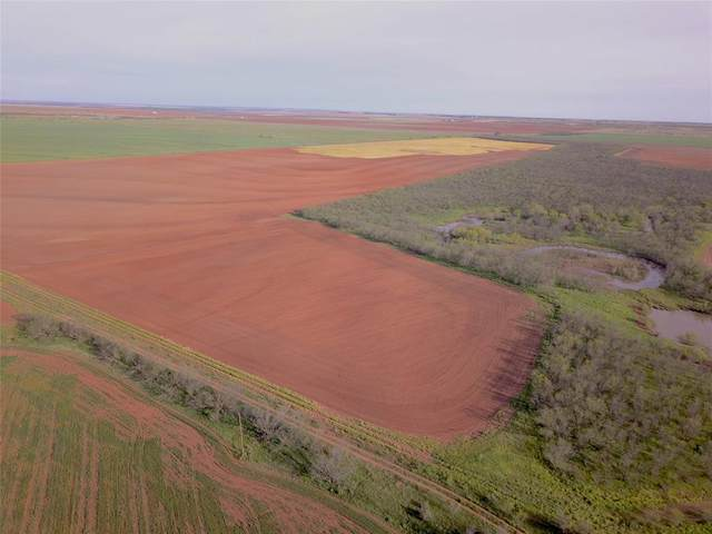 783.6 Acres Cr 427, Rule, TX 79547 (MLS #14660491) :: Real Estate By Design