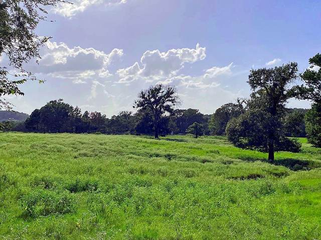TBD County Road 4325, Larue, TX 75770 (MLS #14660673) :: Benchmark Real Estate Services