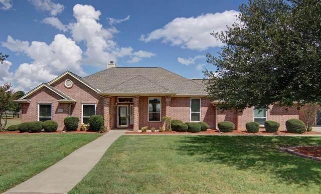 120 Raven Bend, Hudson Oaks, TX 76087 (MLS #14660743) :: Russell Realty Group