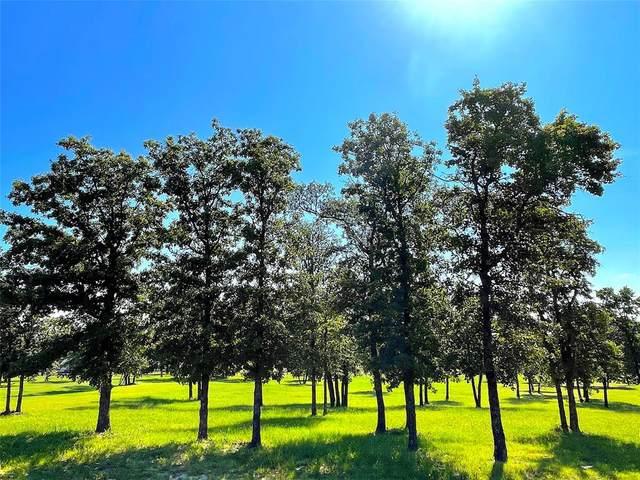 TBD Jakes Lane, Poolville, TX 76487 (MLS #14661102) :: Robbins Real Estate Group