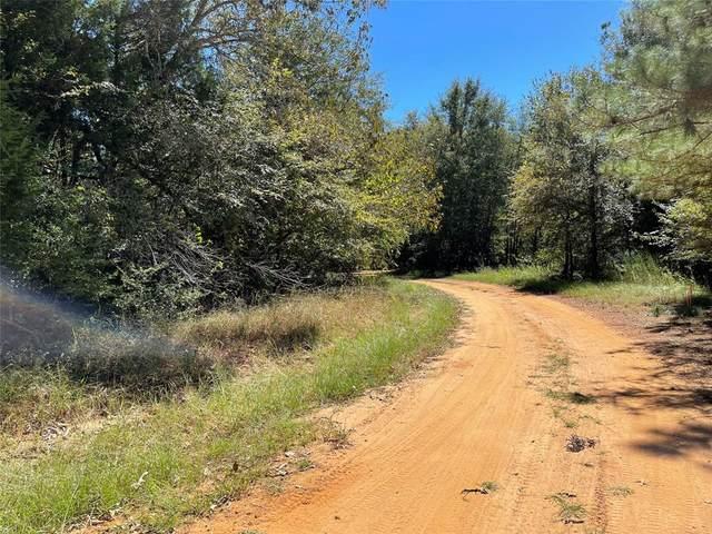 TBD Fcr 361, Oakwood, TX 75855 (MLS #14662399) :: The Hornburg Real Estate Group