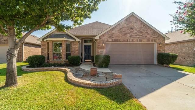 1509 Lake Pine Drive, Little Elm, TX 75068 (MLS #14662901) :: RE/MAX Landmark