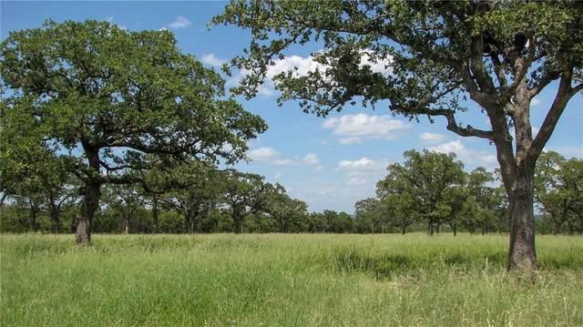 01 Grimes Road, Mineral Wells, TX 76067 (MLS #14664605) :: VIVO Realty