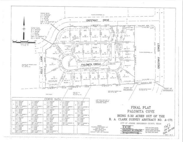 107 Palomita Circle, Athens, TX 75752 (MLS #14664647) :: Robbins Real Estate Group