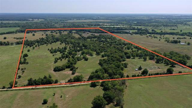 TBD County Road 15140, Blossom, TX 75416 (MLS #14665860) :: Real Estate By Design