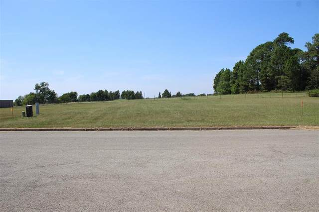 Lot 77A Dela Cruz, Winnsboro, TX 75494 (MLS #14665960) :: Robbins Real Estate Group