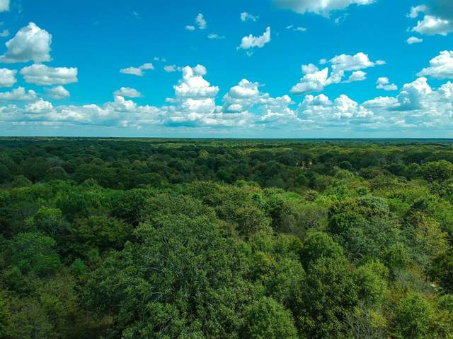 TBD Rs County Road 1315, Emory, TX 75440 (MLS #14666254) :: 1st Choice Realty