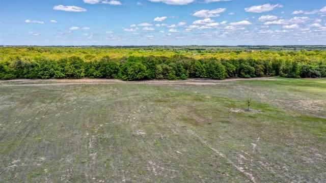 TBD-1 Leatherwood Lane, Poolville, TX 76487 (MLS #14666258) :: Robbins Real Estate Group