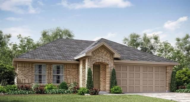 11613 Silver Queen Drive, Aubrey, TX 76227 (MLS #14666368) :: Real Estate By Design