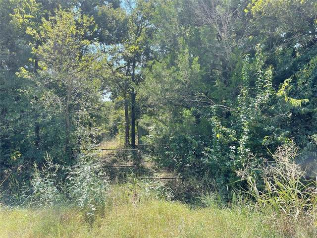 TBD County Rd 263, Gainesville, TX 76240 (MLS #14667076) :: Real Estate By Design