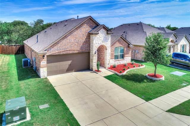 2812 Colorado Drive, Little Elm, TX 75068 (MLS #14667269) :: The Good Home Team