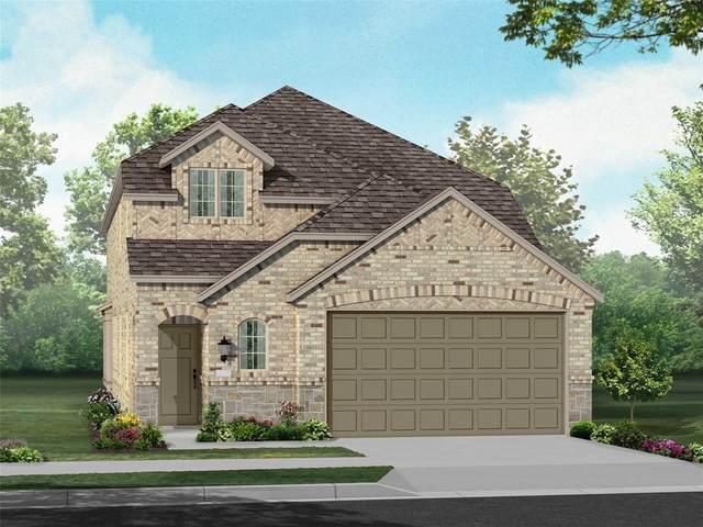 2005 Dappled Grey Avenue, Aubrey, TX 76227 (MLS #14667706) :: Russell Realty Group