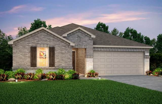 904 Paso Fino Drive, Haslet, TX 76052 (MLS #14667805) :: Real Estate By Design