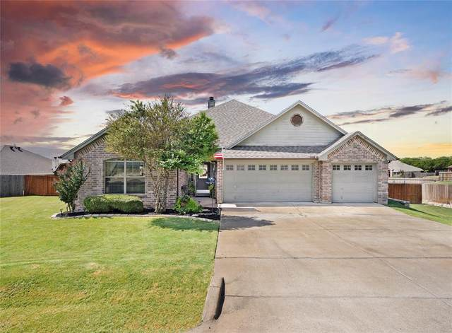 2701 Trek Court, Granbury, TX 76049 (MLS #14669512) :: VIVO Realty