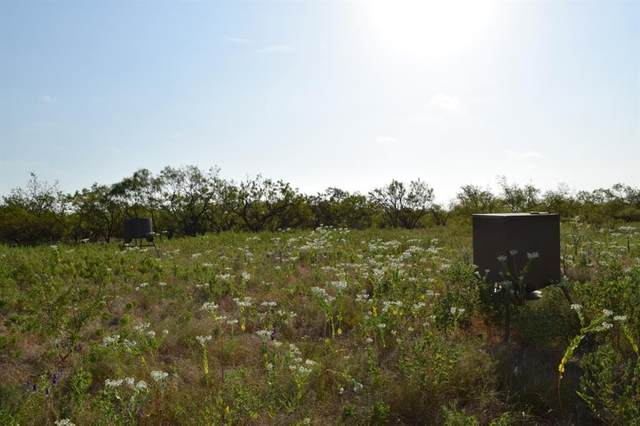 TBD County Road 352, Coleman, TX 76834 (MLS #14669871) :: VIVO Realty