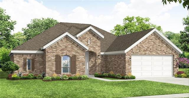 144 Wenham Way, Forney, TX 75126 (MLS #14671163) :: The Star Team | Rogers Healy and Associates