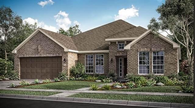 1813 Botticelli Drive, Little Elm, TX 75068 (MLS #14671572) :: Lisa Birdsong Group | Compass