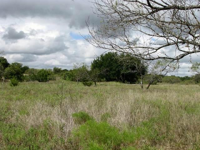 800 Self Road, Gatesville, TX 76528 (MLS #14671984) :: Real Estate By Design