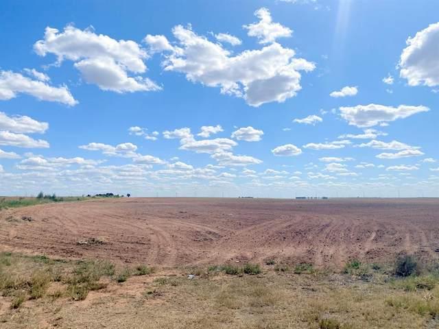 120 Acres Fm 1043, Munday, TX 76371 (MLS #14672248) :: Robbins Real Estate Group