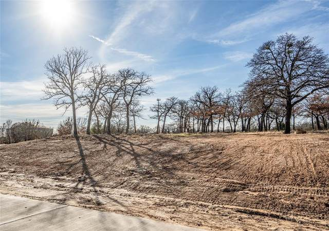 401 Claire Court, Copper Canyon, TX 76226 (MLS #14673394) :: VIVO Realty