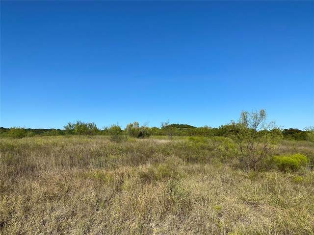 Lot 408 Pk Hills Boulevard, Possum Kingdom Lake, TX 76449 (MLS #14673421) :: The Star Team   Rogers Healy and Associates