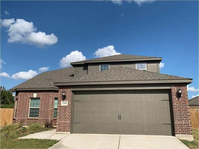 2305 Denali Court, Princeton, TX 75407 (MLS #14673480) :: Real Estate By Design