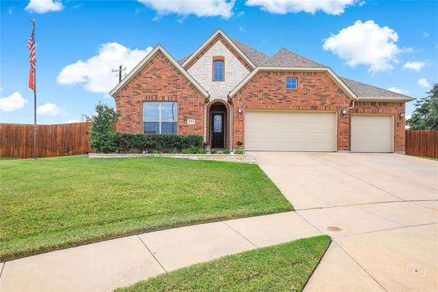4713 Labrador Court, Fort Worth, TX 76262 (MLS #14673567) :: All Cities USA Realty