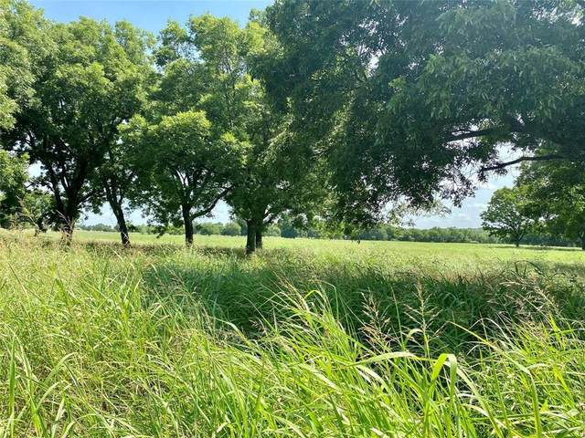 TBD Kara Trail, Lot 4, Van Alstyne, TX 75495 (MLS #14673694) :: Real Estate By Design